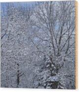 Burnidge Winter Wood Print