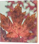Burns Red Wood Print