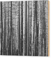 Burnt Forest Wood Print