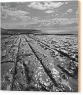 Burren Limestone Landscape In Ireland Wood Print