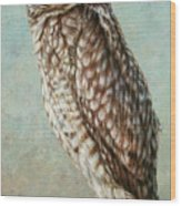 Burrowing Owl Wood Print by James W Johnson