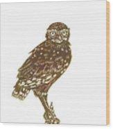 Burrowing Owl On Mullein Wood Print
