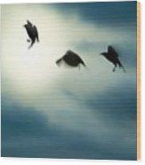 Burst Of Crows Wood Print