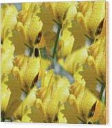 Burst Of Yellow Wood Print