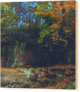 Bursting Autumn Cheer Wood Print