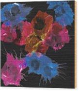 Bursting Comets 2017 - Blue And Pink On Black Wood Print