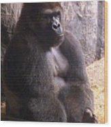 Busch Gorilla Wood Print