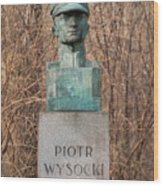 Bush Behind Piotr Wysocki Bust Wood Print