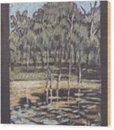 Bush Dam Impression Wood Print