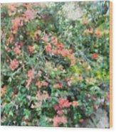 Bush Full Of Flowers. Wood Print