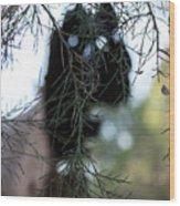 Bush Monster Wood Print