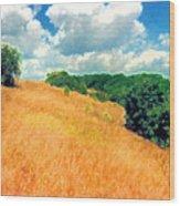 Bushes On A Hill Ae Wood Print