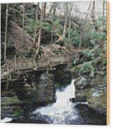 Bushkill Falls Boardwalk 1 Wood Print
