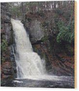 Bushkill Falls Wood Print