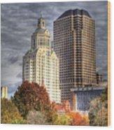 Bushnell Park Hartford Wood Print
