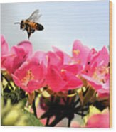 Busy Bees Wood Print