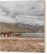 Butcher Jones Horses Wood Print
