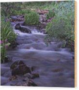 Butler Gulch Water Wood Print