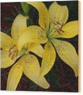 Buttercream Lilies Wood Print