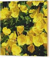 Buttercup Flowers Wood Print