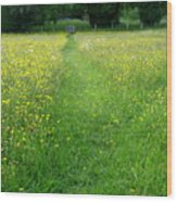 Buttercup Meadow Wood Print