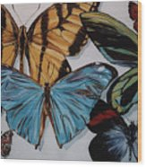 Butterflies Wood Print