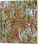 Butterflies In The Grove  Wood Print