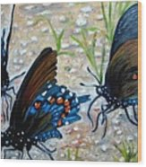 Butterflies Original Oil Painting Wood Print by Natalja Picugina