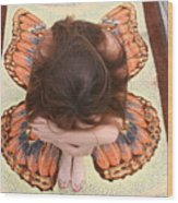 Butterfly 053 Wood Print