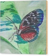 Butterfly 10 Wood Print