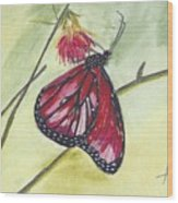 Butterfly 12 Wood Print