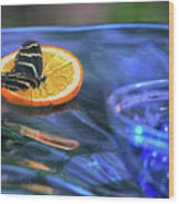 Butterfly 6316 Wood Print
