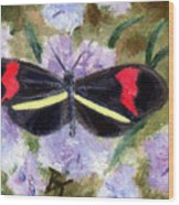 Butterfly Aceo Wood Print