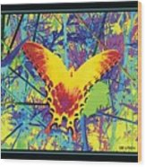 Butterfly All Aglow Wood Print