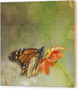 Butterfly And Bokeh Wood Print