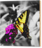 Butterfly And Lilac Wood Print