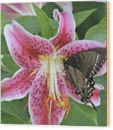 Butterfly And Lilly Wood Print