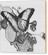 Butterfly And Orchids Wood Print