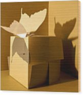 Butterfly And The Cube 1 Wood Print