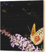 Butterfly Banquet 1 Wood Print