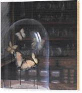 Butterfly Belljar  Wood Print
