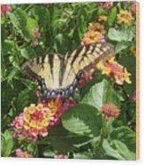 Butterfly Blend Wood Print