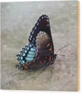 Butterfly Blue On Groovy 2 Wood Print