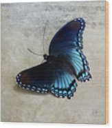 Butterfly Blue On Groovy Wood Print