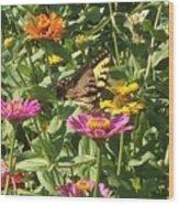 Butterfly Breakfast Wood Print