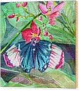 Butterfly Buffet Wood Print