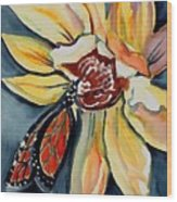 Butterfly -cross Hatch Wood Print