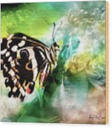 Butterfly Daydream Wood Print