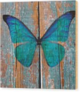 Butterfly Exhibition 1 Wood Print