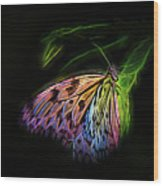Butterfly Fantasy 1a Wood Print